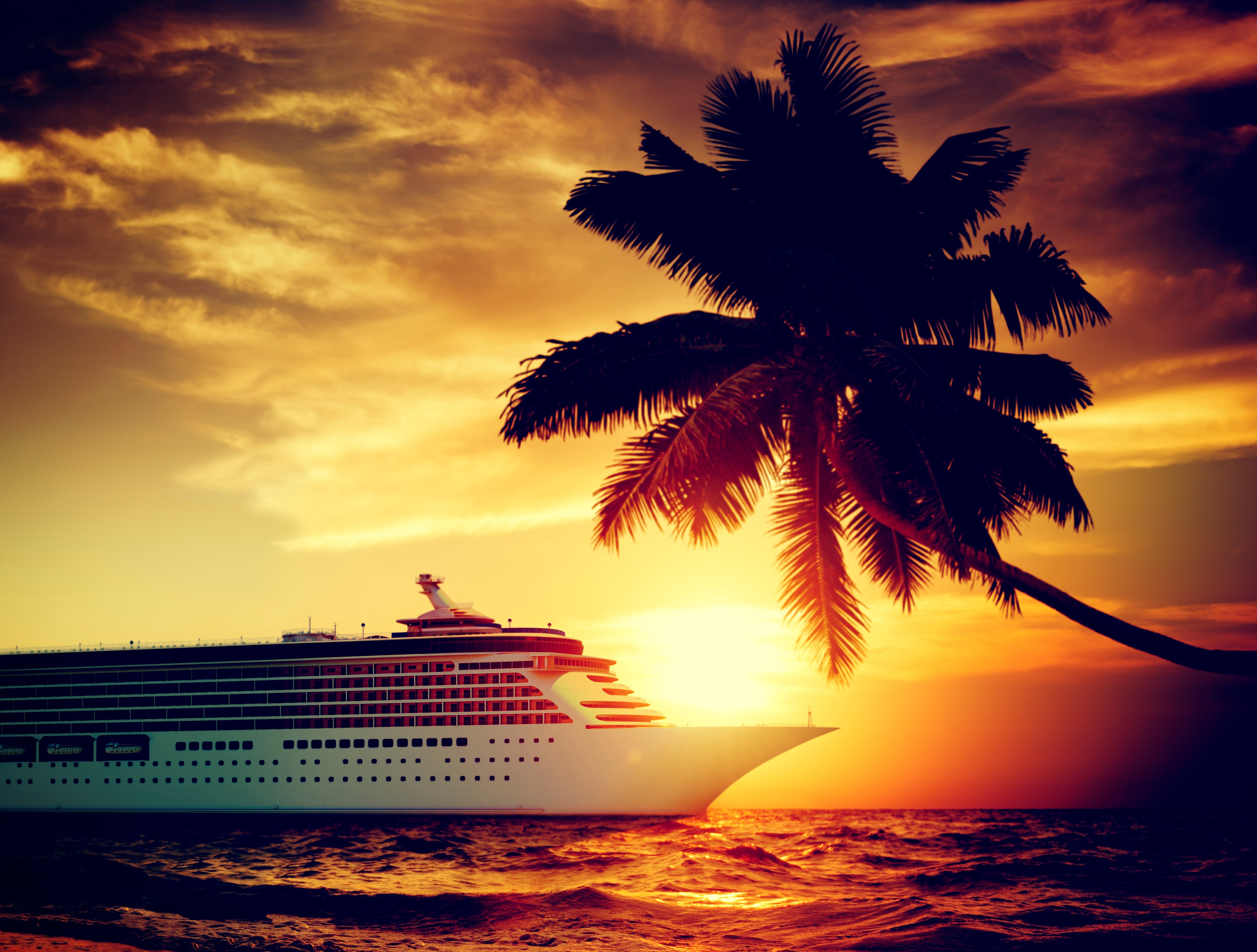 cruiseline ship tropical palmtree ocean sunset